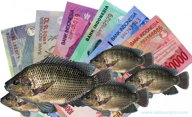 Analisa usaha pembenihan ikan nila